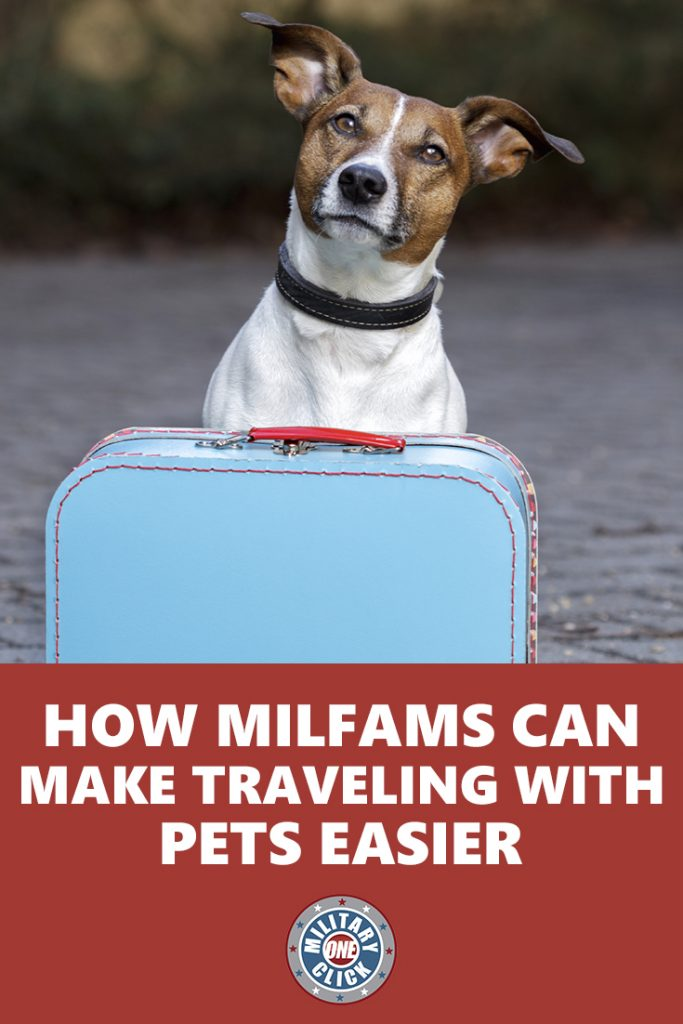Fantastic tips for milfams who travel with their pets. #pcs
