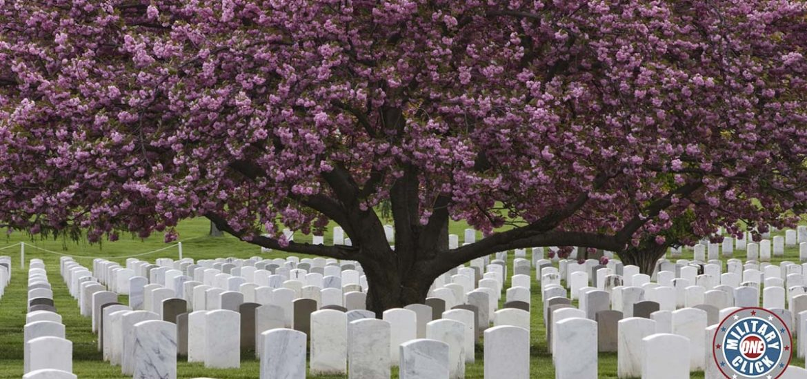 An Arlington lady remembers on Memorial Day. #veterans