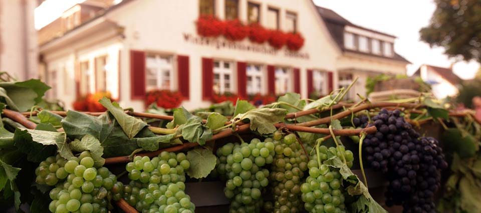 Visit these 8 must-see wine festivals when you're stationed in Germany