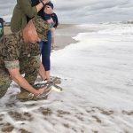 'Purple Heart' sea turtle released back into the ocean with Navy satellite tag used for research