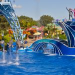 SeaWorld to open more attractions, Sesame Street parades at its parks next year