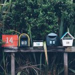 Army spouses: Watch your mailbox for this survey