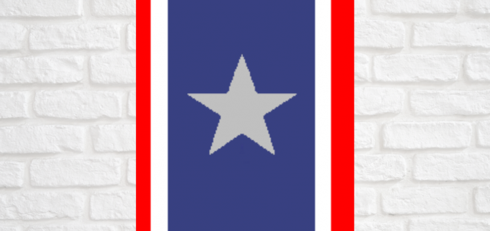 Today is Silver Star Service Banner Day