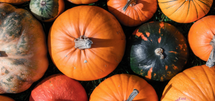 Everything Still Closed? Here's How to Keep Your Kids Busy This Fall